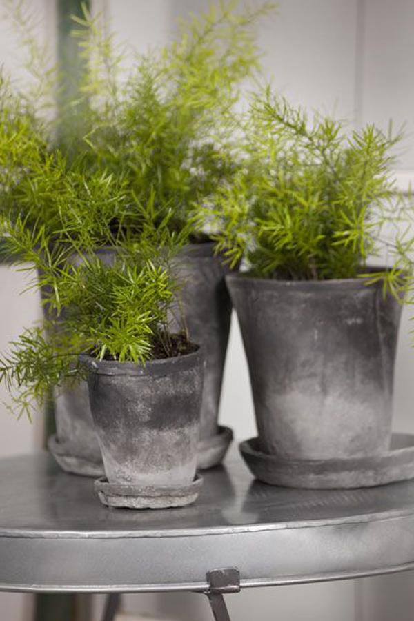 grey-terra-cotta-planters