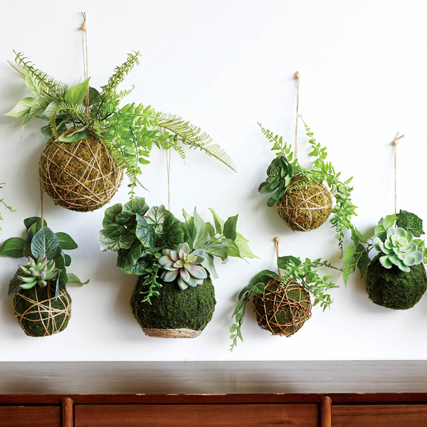 White wall with hanging moss ball faux kokedamas
