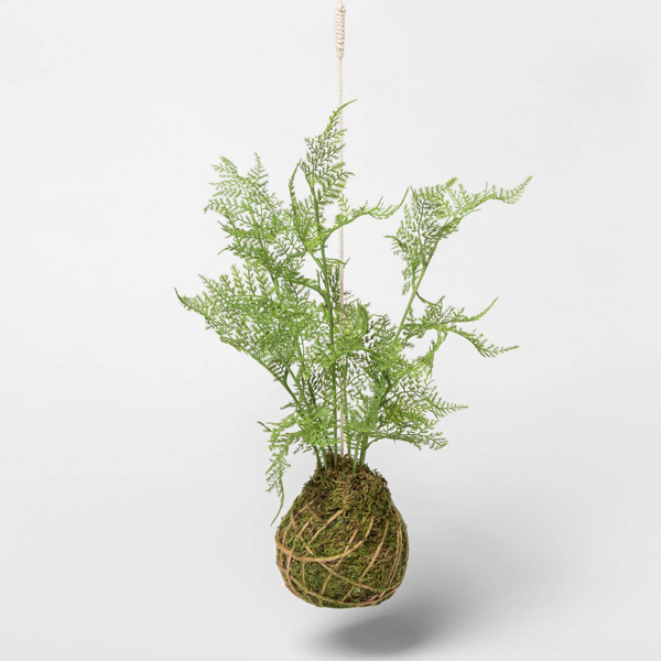Faux fern kokedama hanging from ceiling