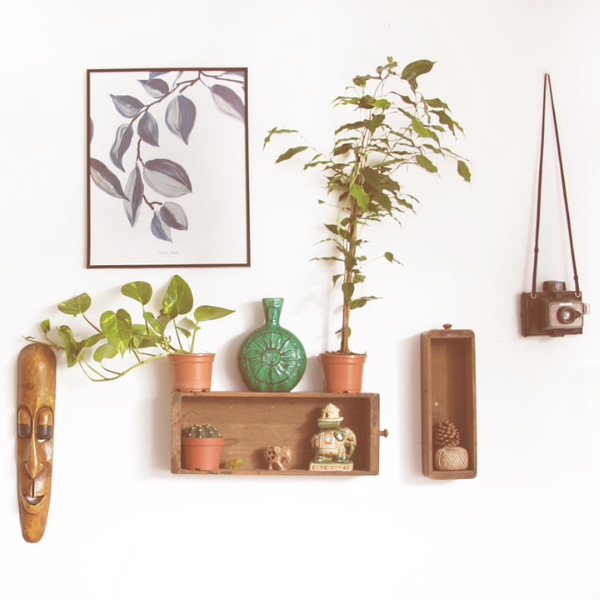 white wall with art, plants and various decor on shelves
